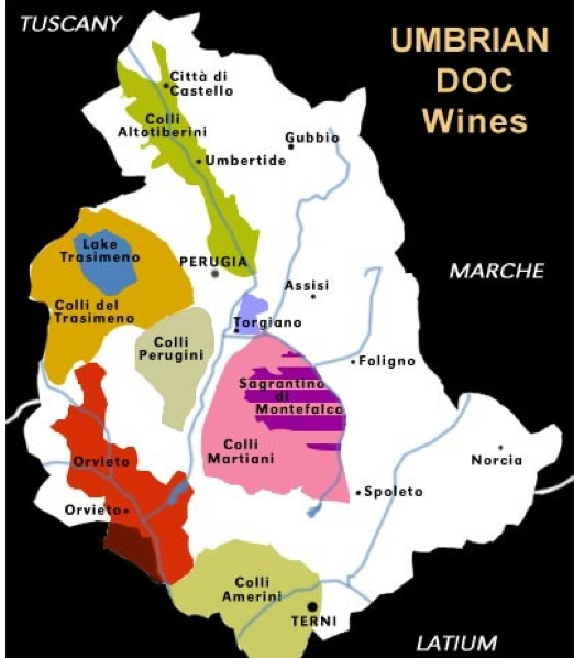 DOC_wines